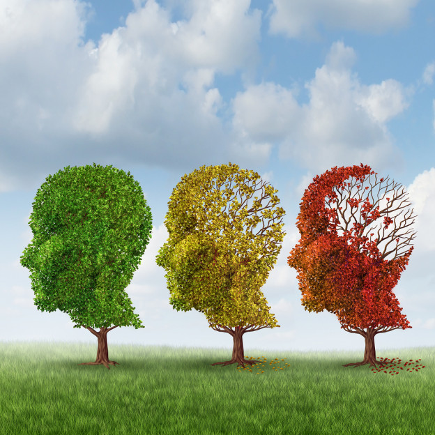 Neurodegenerative, alzheimers disease, brain aging