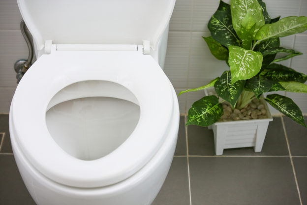 improve bowel movements, stop constipation, natural bowel movements, squatty potty