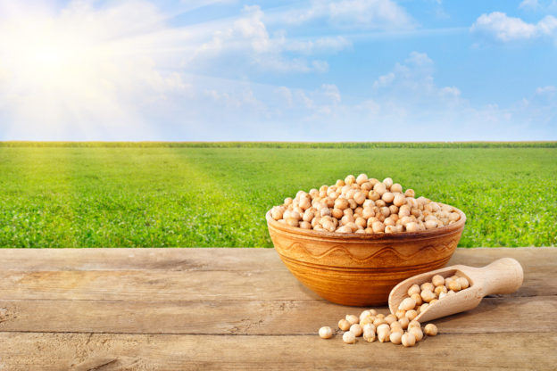 benefits to eating beans in your everyday diet, beans help you lose weight, chickpeas and/or bean benefits