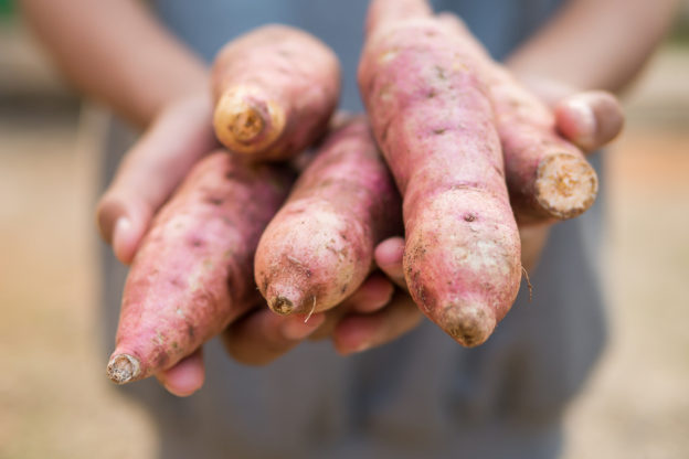 are potatoes healthy or not?, good and bad ways to cook potatoes, benefits of potatoes, pros and cons to potatoes