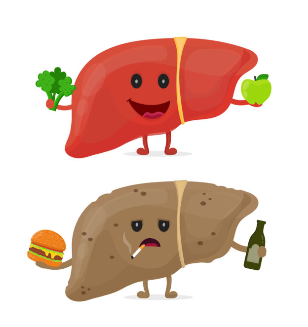 carbohydrates and fatty liver, how to clear a fatty liver, do fatty foods make your liver fat, what to do for NAFLD, how do you get NAFLD, fatty liver and heart disease, best diet to reduce fatty liver, Mediterranean diet and NAFLD,